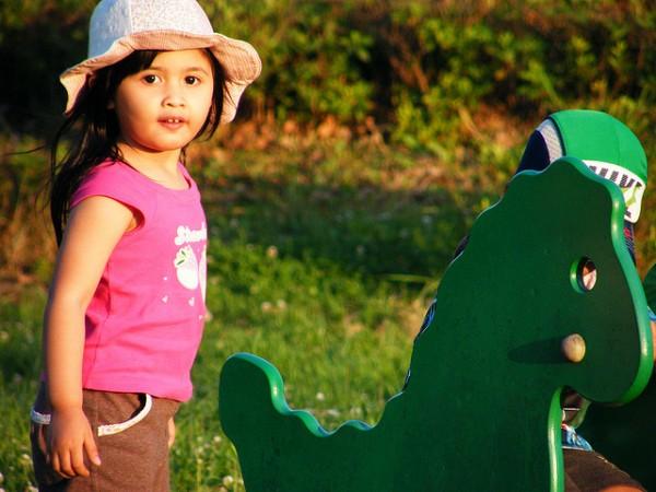 Duńska jakość na placach zabaw. Fot. Emran Kassim via Flickr